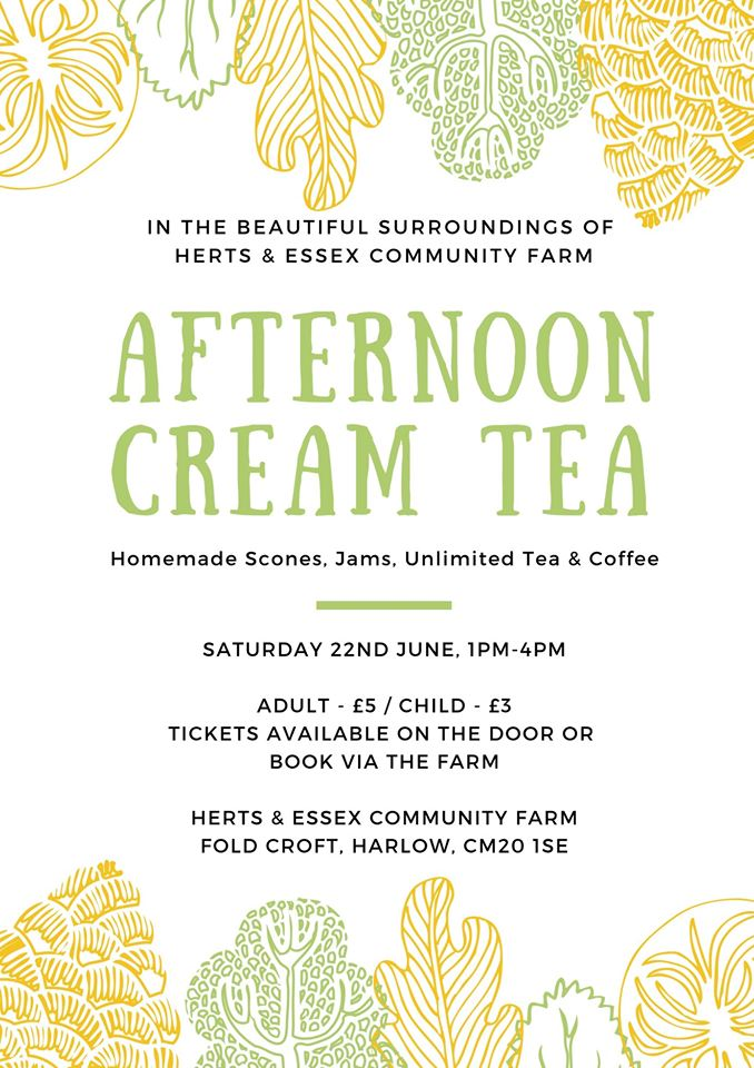 Cream Tea at Herts and Essex Community Farm