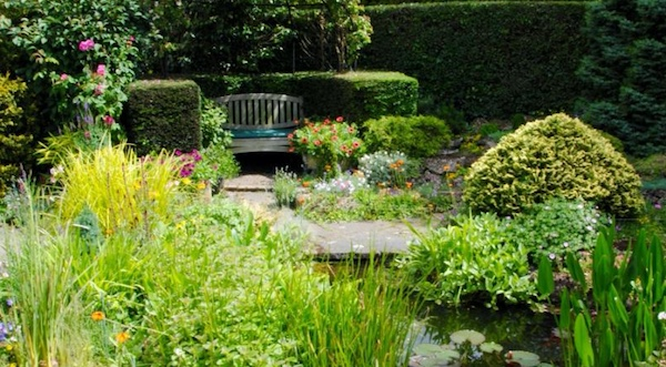 BBC On eShow gardener to open new St Clare Hospice garden