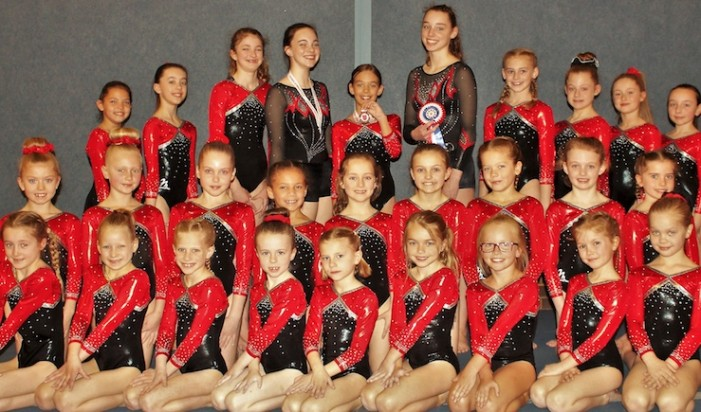 Gymnastics: First medals and rosettes of the year for Harlow