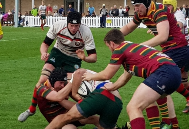 Rugby: Harlow just see off Norwich