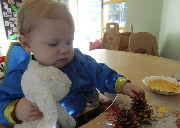 Beloved Teddy Bears treated to a picnic at Kiddi Caru in Harlow