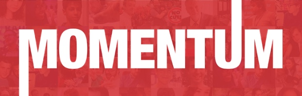 Harlow Momentum: A year in review