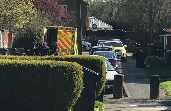 Emergency services at scene in Nicholls Field