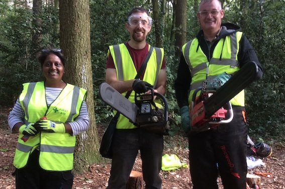 Harlow Labour councillors help clean up Rectory Wood