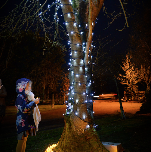 St Clare Hospice to hold seven 'Light Up A Life' services this Christmas