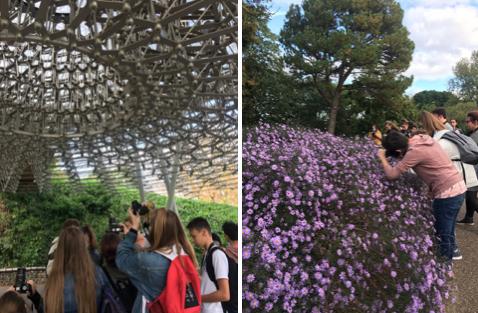 Stewards Academy students visit Kew Gardens