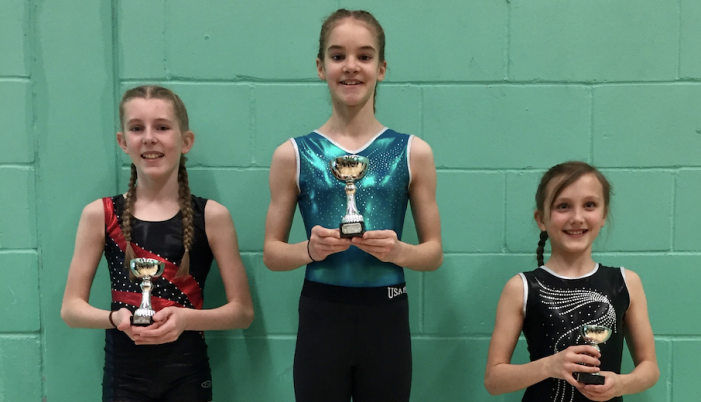 Trampolining: Heather bounces into gold position
