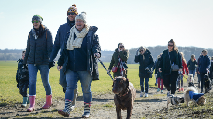 Winter Walkies is coming! Canine capers as St Clare prepares for 13th annual charity dog walk
