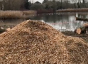 Work begins to improve Netteswell Pond
