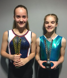 Trampolining: Harlow girls qualify for the National School Finals