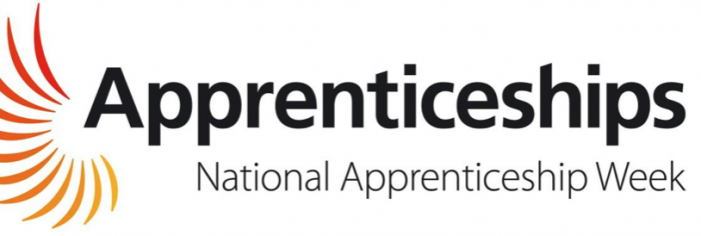 """Stop the apprenticeships snobbery"" says Harlow MP's Apprentice"