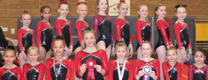 Gymnastics: Lois and Macey shine for Harlow