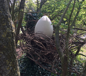 Dinosaur egg found in grounds of Harlow primary school