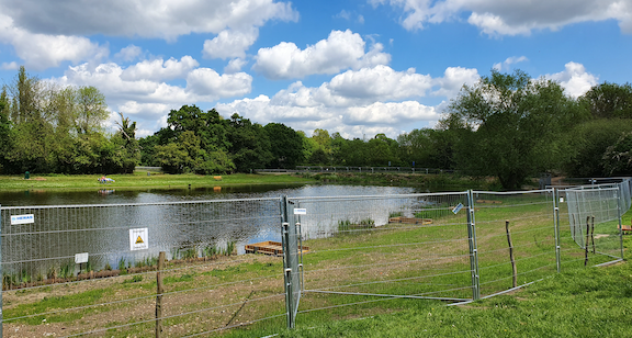 Improvements continue on Netteswell Pond