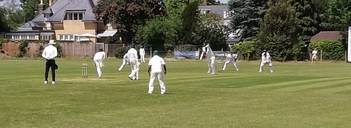 Cricket: Harlow's bowlers secure victory against Woodford