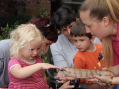 Mobile zoo brings smiles to families at local Hospice