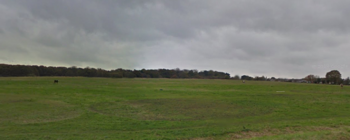 Harlow man pleads guilty to dog being out of control and attacking a man on Latton Common