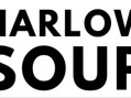 Harlow Soup: Four more organisations to pitch their ideas