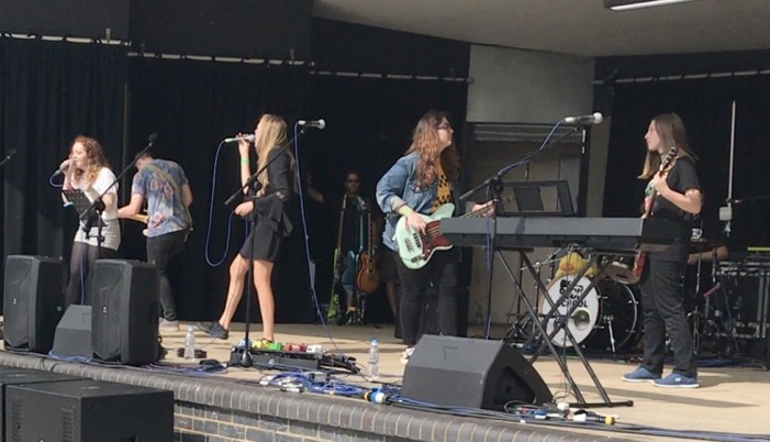 Crowds flock to Rock The Park in Harlow