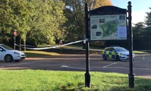 Update: Appeal after man raped in Harlow Town Park