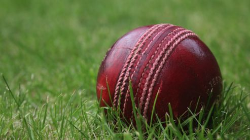 Cricket: Harlow Town CC gain promotion