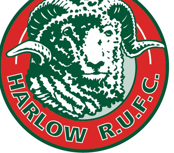 Rugby: Harlow Rams pipped by Thurrock