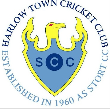 Harlow Town Cricket Club set up cricket challenge fundraiser.