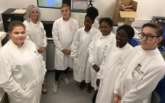 Harlow College students experience work as Public Health England scientists.