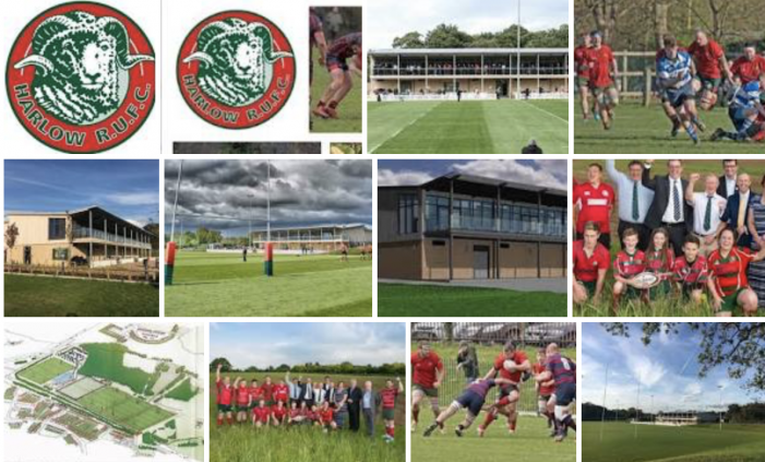 Harlow Rugby Club detail plans to restart training
