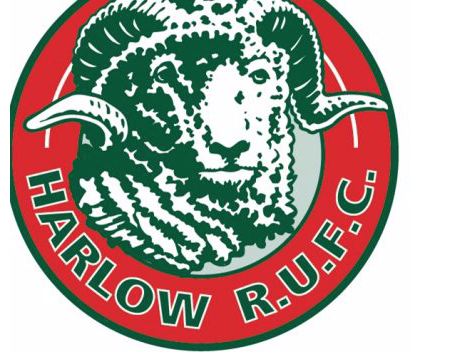 Rugby: Harlow go close against Braintree