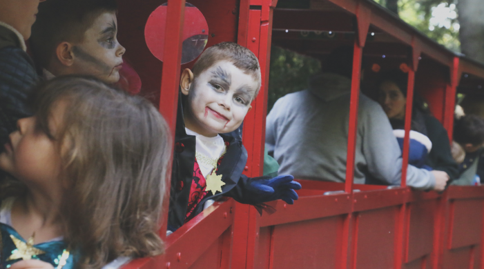 All aboard the Halloween Express at Audley End