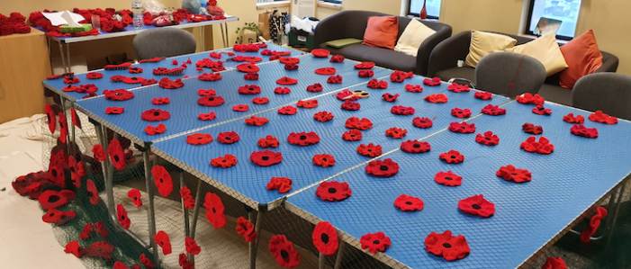 Great progress being made on Harlow's poppy displays