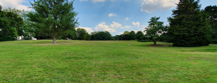 Harlow Town Park named among ten best green spaces in the country