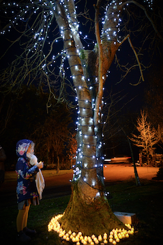 St Clare Hospice hosts seven heartfelt 'Light up a Life' memorial services this festive season