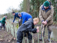 Plant a tree for Harlow