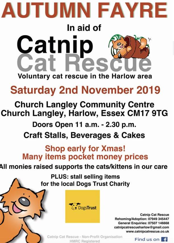 Catnip Rescue Autumn Fayre