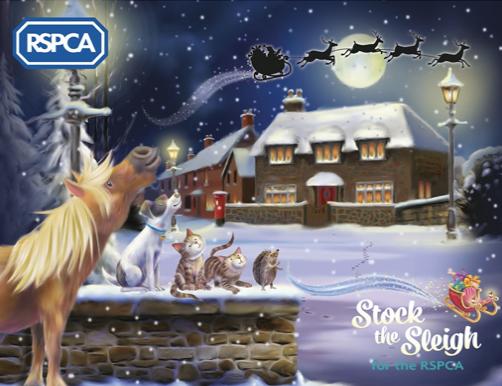 Over 900 calls to RSPCA on Christmas Day