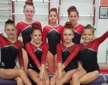Gymnastics: Harlow Gymnasts shine at English Silver Championships