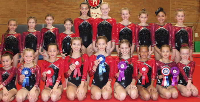 Harlow Gymnastic Club make the grade at county level