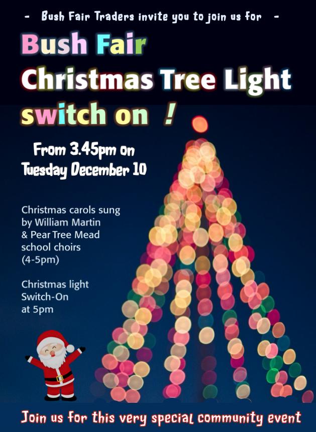 Come along to the Big Bush Fair Christmas Tree Light switch on!