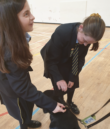 Visit from guide dog inspires young people to fundraise