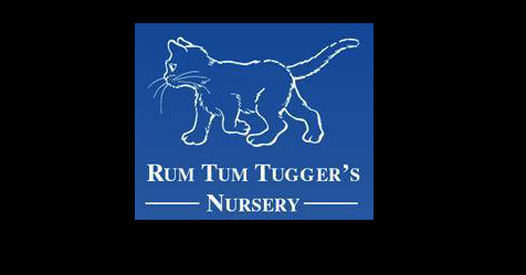 "Harlow nursery Rum Tum Tuggers rated ""Outstanding"" by Ofsted"
