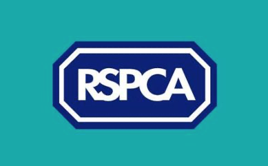 Letter to Editor: RSPCA set Harlow readers a challenge
