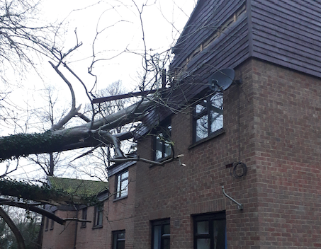 Harlow Council supporting tenants affected by storm damage