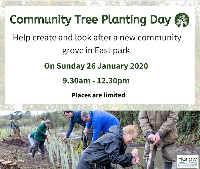Plant a tree for Harlow in East Park
