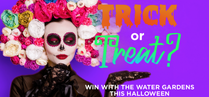 The Water Gardens fantastic Trick or Treat competition